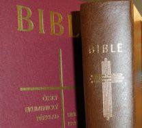 Bible - kniha knih